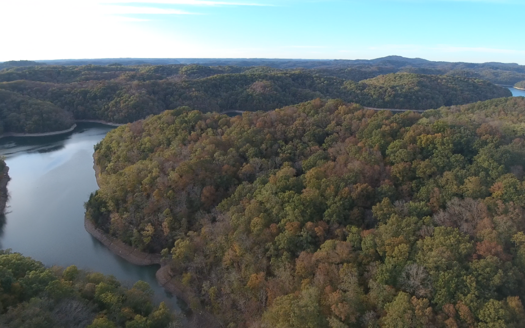 Online Only Auction: 19.5+- Acres of Woodland on Dale Hollow Lake W/Lake View