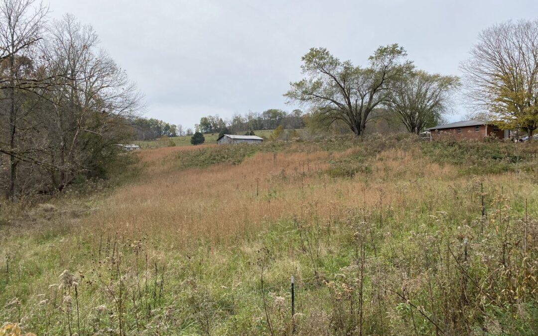 4.01+- Acres, Creek Frontage