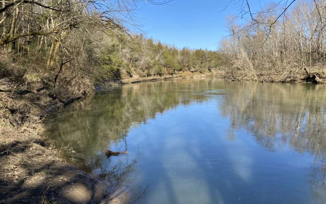 7.13+- Acres, Woodland, Duck River Frontage