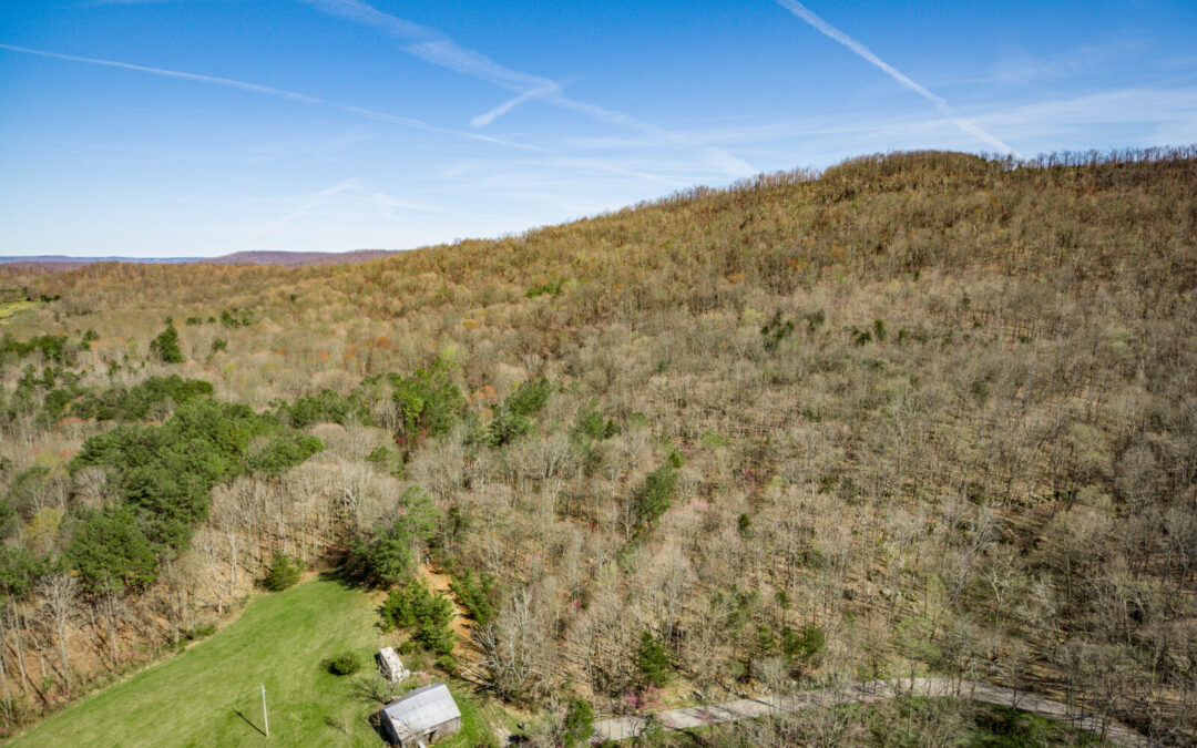 90.39+-Acres, Woodland, Private