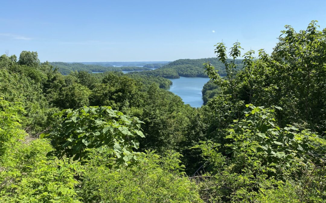 7.37+/- ACRES • WOODLAND • DALE HOLLOW LAKEVIEW • UNRESTRICTED
