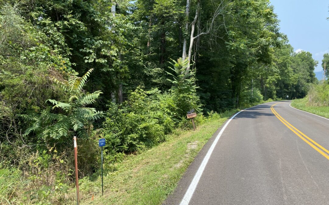 2.50+/- ACRES • MATURE WOODLAND • CANEY FORK RIVER FRONTAGE • 2 TRACTS